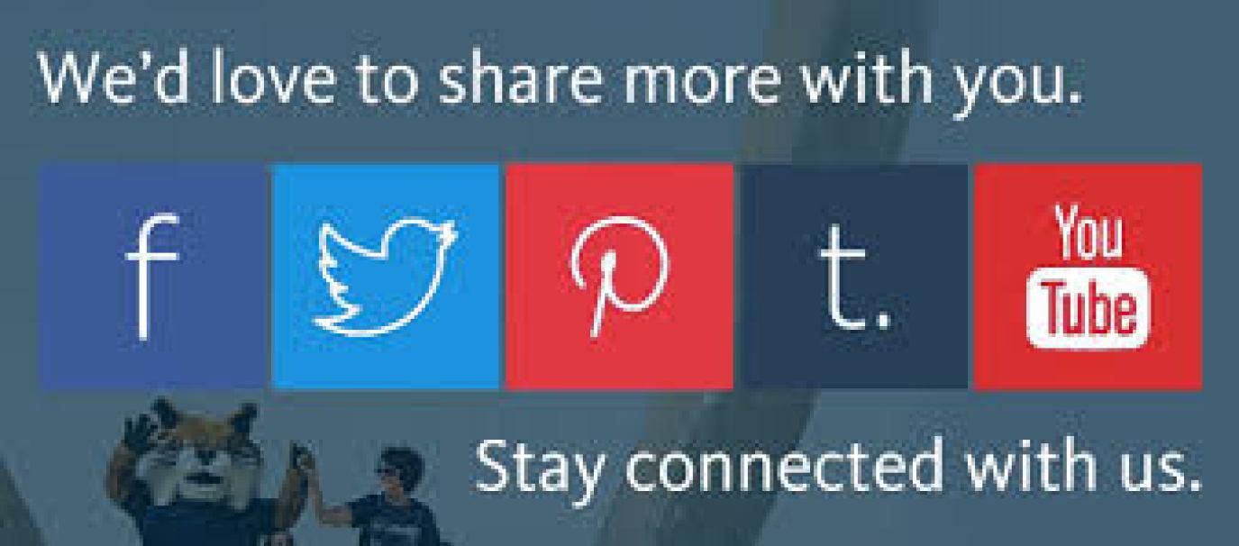 indexvisit-us-social